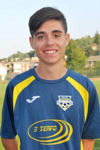 Alessandro Guareschi